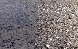 Asphalt runway before/after cleaning with TrackJet® system